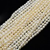 Grade A Natural Cultured Freshwater Pearl Beads Strands X-PEAR-L001-D-03-1