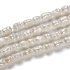 Natural Cultured Freshwater Pearl Beads PEAR-D087-1-4