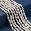 Grade A Natural Cultured Freshwater Pearl Beads Strands X-A23WS011-3