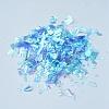 Plastic Candy Sequins/Paillette ChipX-DIY-I019-01J-2