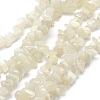 Natural Moonstone Beads StrandsX-G-P332-01-1