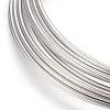 Steel Memory WireX-MW5.5CM-1-NF-2